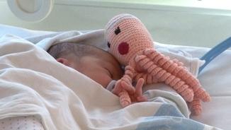 Un nounat de l'Hospital Verge de la Cinta agafa un tentacle del pop amb la mà