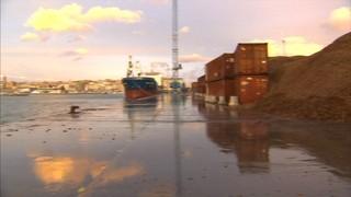 El fort temporal fa caure al mar trenta-cinc tones de massa forestal a Palamós i quatre contenidors marítims