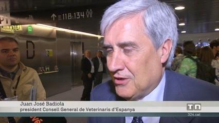 Els veterinaris reclamen que la vacuna de la ràbia sigui obligatòria per a gossos i gats