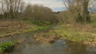 Els investigadors han analitzat la presència d'antibiòtics al riu Fluvià