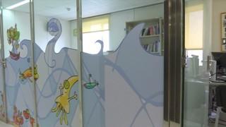 Cardiopatia congènita: prevenir seqüeles i estendre la formació als països subdesenvolupats