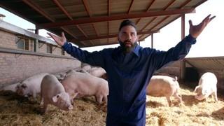 El millor restaurant de cuina de porc a la plana de Vic