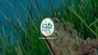 """MeteoAmbient 242 – """"Save Posidonia Project"""" a Formentera"""