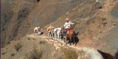 El sistema andí de vies que travessa sis països de Sud-amèrica, nomenat Patrimoni Mundial de la UNESCO