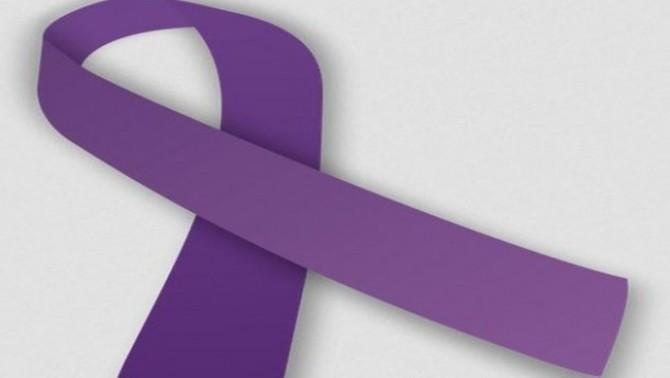 La iniciativa ve amb el 25 de novembre com a dia internacional per l'eliminació de la violència contra les dones