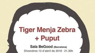 Tiger Menja Zebra i Puput, sorolls d'anarquia i purga