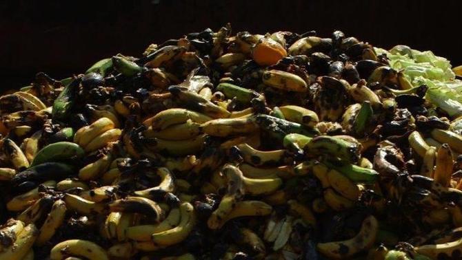 A Catalunya, cada any es malbaraten 100 quilos de menjar per persona.