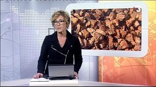 Telenotícies Comarques de Girona
