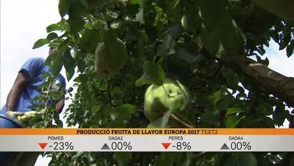 Optmisme en el sector fruiter davant la campanya de venda de peres i pomes