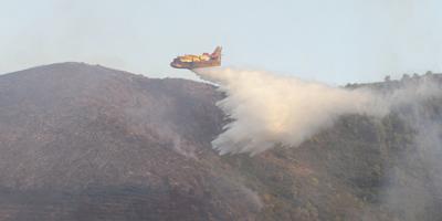 Una avioneta treballa per extingir l'incendi de Montferri. (Foto: EFE)