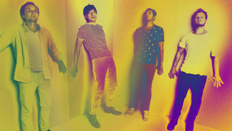 Grizzly Bear i l'art del detall