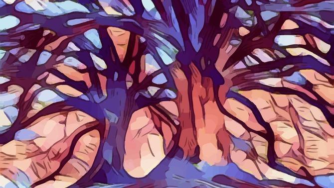 L'arbre genealògic més gran del món connecta 13 milions de persones