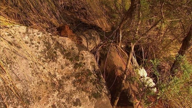 Troben a Cervelló el cos d'un home desaparegut fa 32 anys