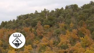 El municipi de Sant Esteve dels Roures