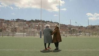 7 àvies catalanes, 7 àvies andaluses i 2 setmanes de convivència