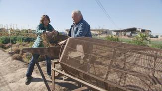 """Una imatge del documental """"Xufla, molt més que orxata"""""""