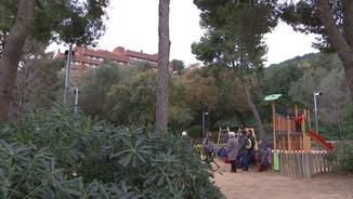 Els arbres augmenten la concentració i l'atenció dels nens