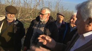 Torres de Segre organitza un taller d'esporga per a turistes
