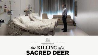 """""""El sacrificio de un ciervo sagrado"""" i el cinema de Yorgos Lanthimos"""