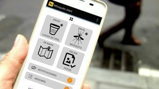 Nou portal d'internet de Mosquito Alert per controlar el mosquit tigre