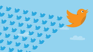 twitter-birds-flight