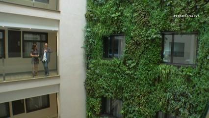 Aconseguir tenir un oasi verd en zones urbanes, un dels objectius dels hotels de les ciutats que s'han adonat de la importància de les plantes per al benestar