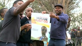 El partit de Mugabe el destitueix com a líder