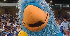 Perico, mascota de l'Espanyol