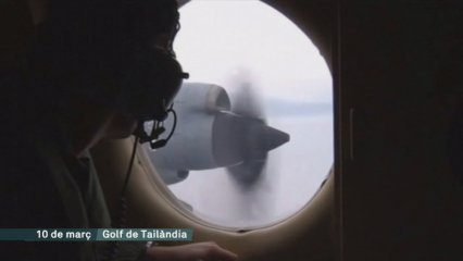 Recerca avió Malaysia Airlines