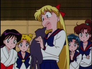 Sailor Moon [TV3] [ONLINE] [DD] [MP4] 1480378999818