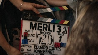 Merlinari - La bronca