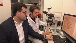 Eduard Batlle, investigador d'ICREA, ha liderat l'estudi