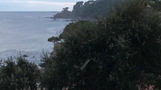Neu arran de mar a Calella de Palafrugell