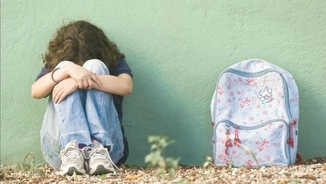"""Manual pràctic antibullying"": el paper de la víctima"