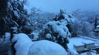 La nevada, a Vallvidrera, que posa punt final a l'hivern (Queralt Ciganda)