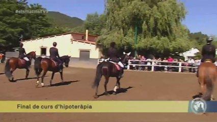 Hipoteràpia, teràpia amb cavalls