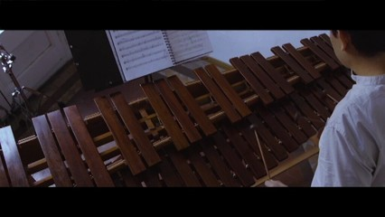 Trobada de marimbes