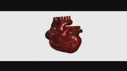 Vídeo divulgatiu de La Marató 2007: malalties cardiovasculars