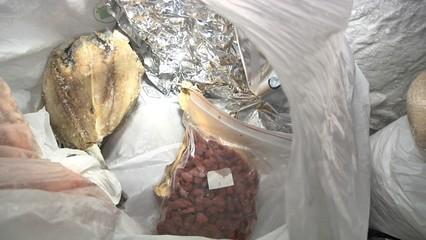 La Guàrdia Urbana tanca 13 restaurants per males condicions d'higiene