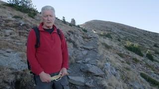 Francesc Guillamet i Jaume Taurinyà - Primavera
