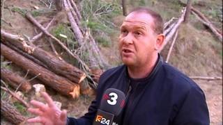 Gandesa aprofitarà la fusta dels seus boscos per calefactar edificis públics