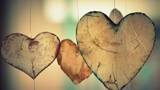 Cançons per fer l'amor