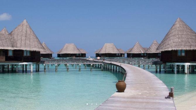 Un hotel de luxe de les Maldives ofereix 15 dies gratis a canvi de cuidar tortugues