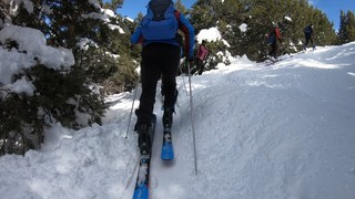 How to Skimo