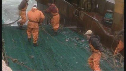 La sobrepesca a Europa
