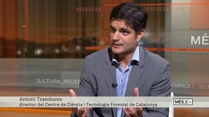 """Antoni Trasobares: """"El que hem fet els darrers 30 anys ha condicionat com tenim els boscos avui en dia"""""""
