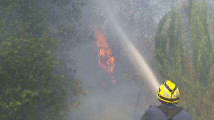 Una cigarreta llençada, possible causa de l'incendi de Vilopriu