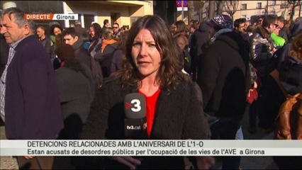 Onze detinguts a Girona vinculats a l'independentisme, en una operació de la Policia Nacional
