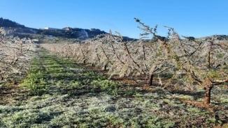 Què ha passat avui al pla de Lleida, l'Alt Pirineu i l'Aran?
