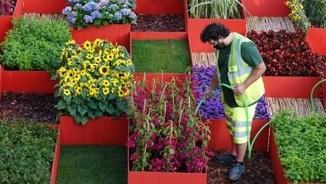 Més de 220.000 visitants al Temps de Flors